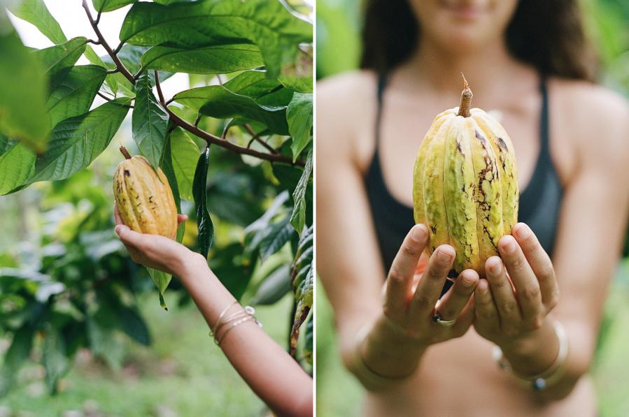 kauai-portrait-photography-hawaii-elopement-photographer